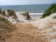 Blick durch die Dünen auf die Nordsee