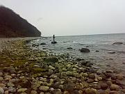 Meerforellenküste