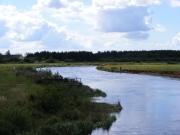 Skjern Au, Borris Strecke, bei Skjern